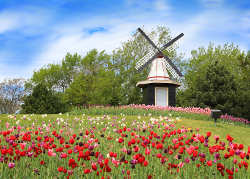 Holland Familienurlaub